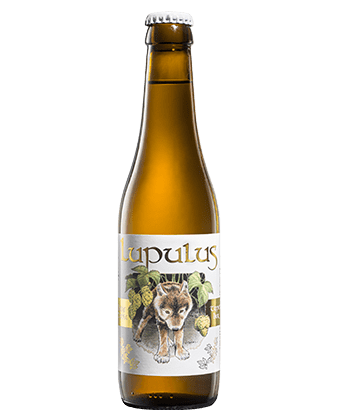Lupulus – Triple 33 cl.